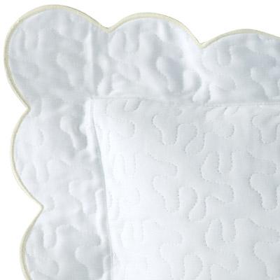 Ivory on White