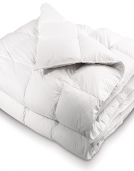 Snow Flake Down Comforters