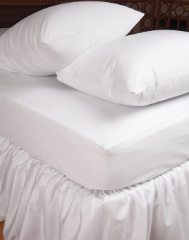 Bed Bug Protectors