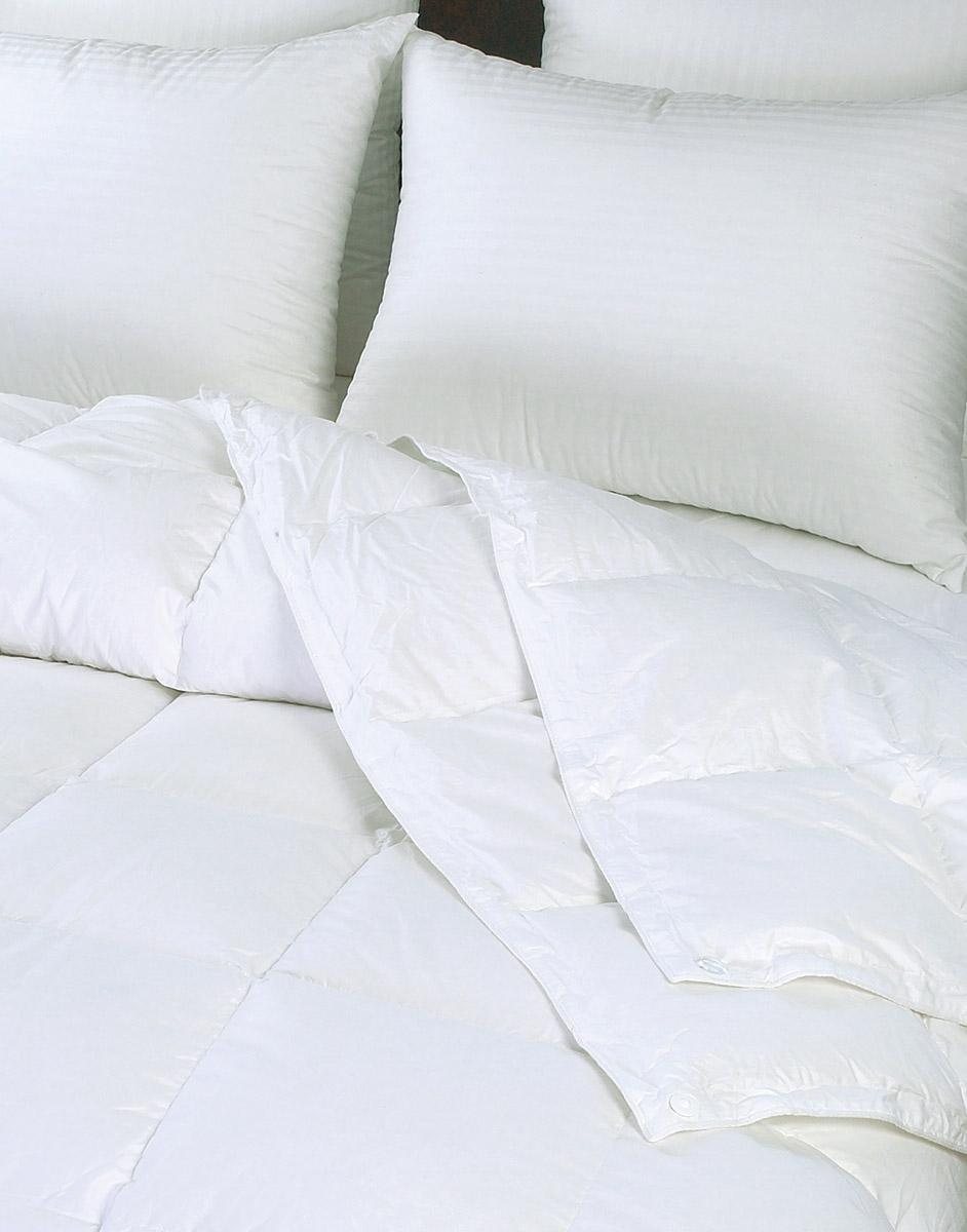 Seasons Down Comforters